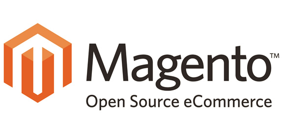 Website Development using Magento